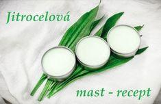 Jitrocelová mast - recept, postup, návod, příprava, suroviny, ingredience - Bylinky pro všechny Edible Plants, Aloe, Aloe Vera