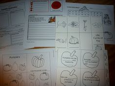 A big list of all kinds of free learning ideas found online. All pumpkin themed. As well as some great Montessori or Tot tray ideas.