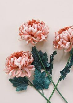 Absolutely gorgeous dusty pink mum artificial flowers stem is a must for your fall wedding. The trendy color will make it the focal point of your DIY bridal flower bouquet. Dusty Pink Tall x Bloom Silk Explore Fall Wedding Flowers Types Of Flowers, Fake Flowers, Flowers Nature, Artificial Flowers, Silk Flowers, Bouquet Flowers, Exotic Flowers, Different Kinds Of Flowers, Colorful Flowers