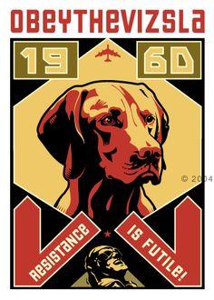 Obet the Vizsla Most Beautiful Dog Breeds, Beautiful Dogs, Mans Best Friend, Girls Best Friend, New Puppy, Puppy Love, Lesser Dog, Obey Art, Resistance Is Futile