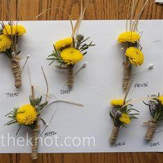 Simple yellow mums