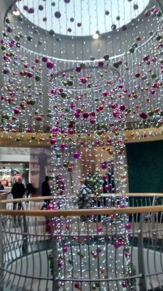 Beautiful photo in Bluewater