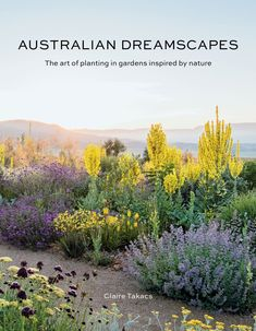 Buy Australian Dreamscapes by Claire Takacs at Mighty Ape NZ. In Australian Dreamscapes, Claire Takacs showcases the varied gardens found in the Australian landscape, from lush green oases to semi-arid settings. Australian Garden Design, Australian Native Garden, Australian Plants, Cottage Garden Plants, Dry Garden, Backyard Cottage, Cottage Gardens, Garden Beds, House Plants