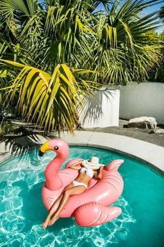 floating on a flamingo