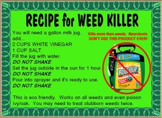 Organic roundup weed killer weed killers diy organic weed killer