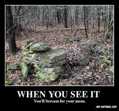 Image result for scary like when you see it