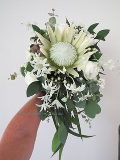 Beautiful, elegant, native bouquet, wild flowers, Australian natives and south african protea, perfect for a country theme wedding or any wedding, timeless. #native bouquet #trailing bouquet #protea #natives #bride #natural bouquet #country #chic #wildflowers, #australian natives #protea #romantic