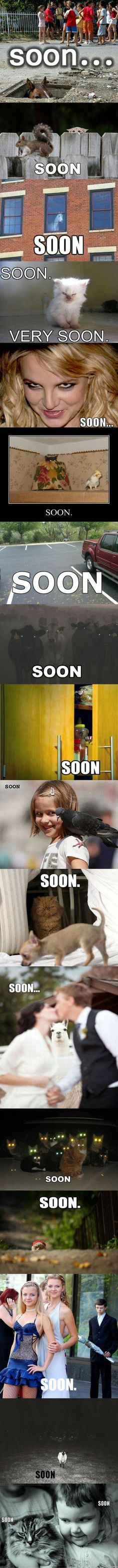 "Hilarious ""soon"" pictures"