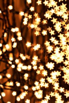 twinkle twinkle little star, I SEE YOU and wish upon all these lovely stars! Twinkle Twinkle Little Star, Twinkle Lights, String Lights, Noel Christmas, Christmas Lights, Christmas Ideas, Christmas Images, Vintage Christmas, Christmas Decor