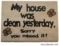 My house WAS clean...