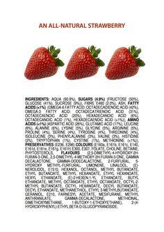 Ingredients of an All-Natural Strawberry ENGLISH jameskennedymonash.wordpress.com