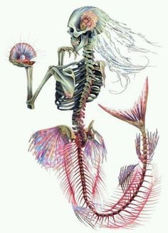 Skeleton Mermaid, I want to draw this.