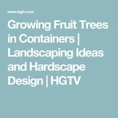 Growing Fruit Trees in Containers | Landscaping Ideas and Hardscape Design | HGTV