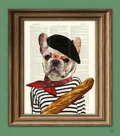 Oui Oui!! Pierre the French Bulldog dog with beret