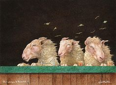 """""""Three Sheeps To The Wind...."""" by Will Bullas"""