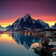 """mittnorge: """"Colorful night in Reine Lofoten 