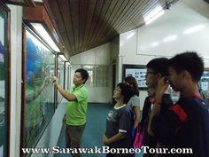 The kind guide explaining about Kinabalu park to the tourists Kinabalu Park, World Heritage Sites