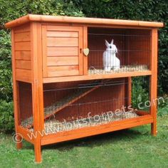 Large Outdoor Rabbit Hutch Plans