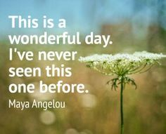 This is a wonderful day. I've never seen this one before. Maya Angelou