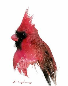 Watercolor Artists, Watercolor Bird, Portrait Wall, Thing 1, Christmas Drawing, Hanging Art, Bird Prints, Animal Paintings, Bird Art