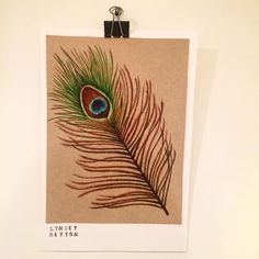 #feather #illustration #realism #drawing #prismacolor #peacock #bird #realistic