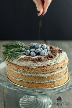 Poppyseed cake with  dulce de leche