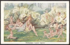 Signed Constance Symonds Young Fairies by Primroses 1937 Faulkner Series 1957 Vintage Fairies, Primroses, Fairy Land, Fairy Tales, Baby Fairy, Art Reproductions, Gifts In A Mug, Faeries, Poster Size Prints
