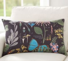 Daisy Botanical Print Lumbar Pillow Cover | Pottery Barn