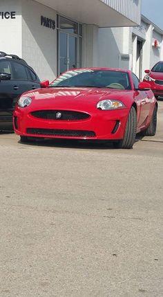 Jaguar I love my job.   No it's NOT for sale