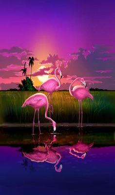 Digital Art - iPhone Case - Flamingoes Flamingos Tropical Sunset landscape florida everglades hot pink purple by Walt Curlee , Flamingo Painting, Flamingo Art, Pink Flamingos, Flamingo Wallpaper, Butterfly Wallpaper, Colorful Wallpaper, Wallpaper Pictures, Wallpaper Backgrounds, Iphone Wallpaper