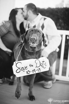 cute Save the Date photo with dog