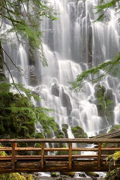 dazzling & picturesque Ramona Falls, outside of Portland, OR