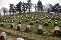 pics of fallen troops | ... fallen troops during an annual event known as Wreaths Across America