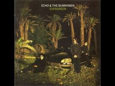 Artist: Echo And The Bunnymen Album: Evergreen (Limited Edition) Year: 1997 Country: UK Style: Post-Punk, New Wave Echo And The Bunnymen, Greatest Album Covers, Green Jumpers, Old Cds, Album Cover Design, Great Albums, Film Books, Beautiful Songs, Greatest Songs