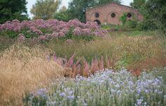 Maximillianpark Garden by Piet Oudolf #gardening