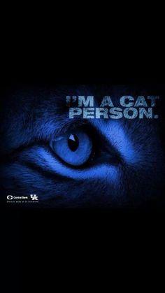 Go UK Wildcats