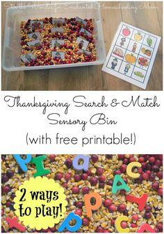 Thanksgiving Search & Match Sensory Bin