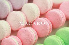 product : macaron photo by. wooubistudio 마카롱 상품 사진 _우유비스튜디오