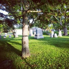 Early morning at the Port Oshawa Pioneer Cemetery