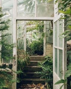 Lean-to glass house