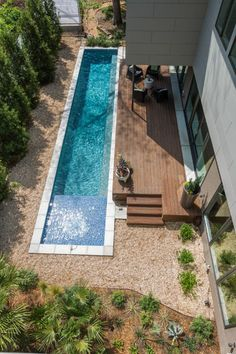 """Small backyard… Pool oasis with large deck and cryptomeria japonica, which is a fast growing evergreen. It loves the sun and makes a great screen. The pool is 8' wide x 50 ' long, the shelf is 6"""" deep. The exterior decking is bamboo."""