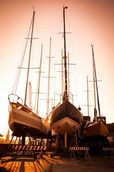 Sailboats getting bored in the dry dock...
