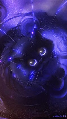 Schwarzer_Kater_Nacht - Best of Wallpapers for Andriod and ios Pet Anime, Anime Animals, Cat Wallpaper, Animal Wallpaper, Warrior Cats, Black Cat Art, Black Kitty, Cute Animal Drawings, Cat Drawing