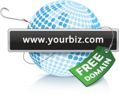 Choosing among various domain names for your website