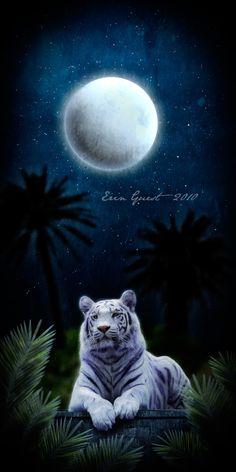 Digital drawing by Renilicious Beautiful Dark Art, Beautiful Nature Wallpaper, Beautiful Cats, Tiger Images, Tiger Pictures, Tiger Wallpaper, Animal Wallpaper, Big Cats Art, Cat Art