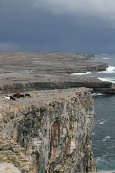 Some of the oldest archaeological remains in Ireland can be found in The Aran Islands, located at the mouth of Galway Bay.  Stunning views, aren't they?