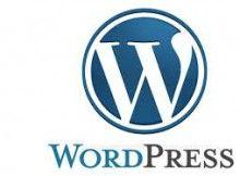sviluppatore wordpress roma