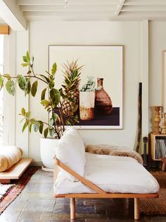 neutral living room with a white pop and scott sofa via The Design Files | huge potted plant and art | mediterranean style decor | wooden details | white washed walls and exposed ceiling beams