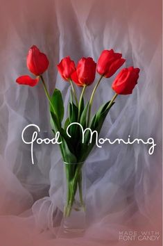 Good Morning Husband, Good Morning Saturday, Good Morning Flowers, Good Morning Picture, Good Morning Good Night, Good Morning Beautiful Pictures, Good Morning Inspiration, Good Morning Images Hd, Happy Morning Quotes