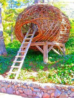 Californian tree nests: Inspired by birds, built for people : TreeHugger